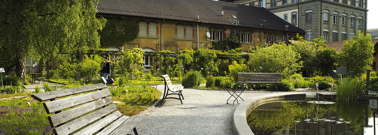 Jardin botanique et mus e les sentiers de l 39 eau for Jardin 3 rivieres